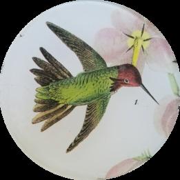 Flying Hummingbird #1 O-139