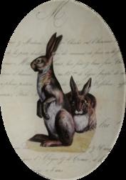 Bunnies Over Script A-70