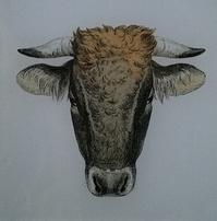 Bullhead #2 A-453