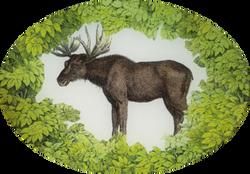 Woodland Moose W-10