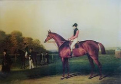 Jockey with Red Sleeves H-4