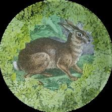 Woodland Bunny W-22