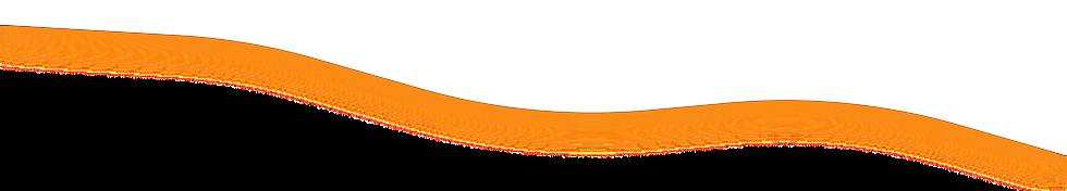 orange 04.png