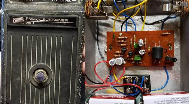 Mid 70s Roland AS-1 Sustain
