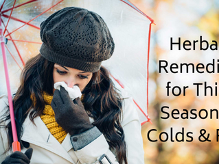 Herbal Remedies for This Season's Colds and Flus