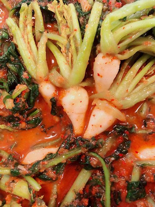 Yeolmu Kimchi 열무김치