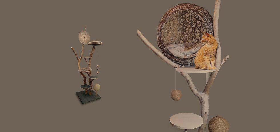 fond-header-katzimini-arbre-chat.jpg