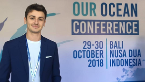 Nomad Plastic at Our Ocean Conference 2018 in Bali!
