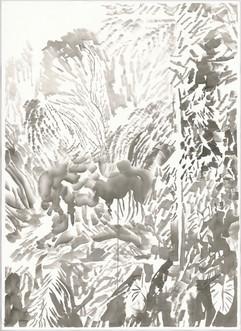 有海芋和松樹的風景