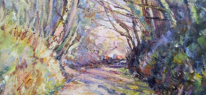 Summerset Lane