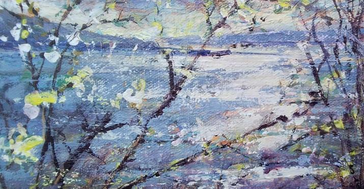 Wimble. 20 x20ball Lake Exmoor. Acrylic