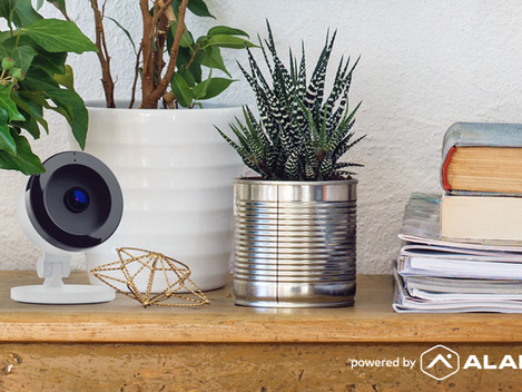 Why Smart Home Security is the Best Vacation House-Sitter