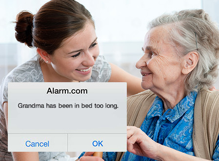 Senior Wellness Alert Security System