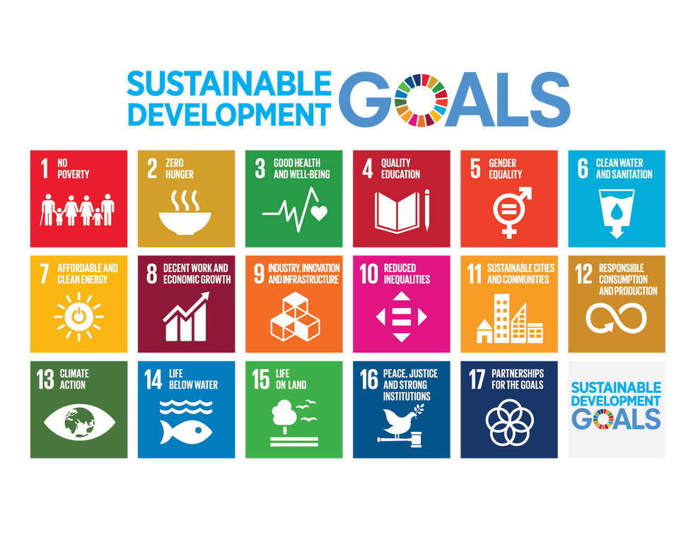 The Ecology of Thought and Implementing the Sustainable Development Goals (SDGs) Insights from our &