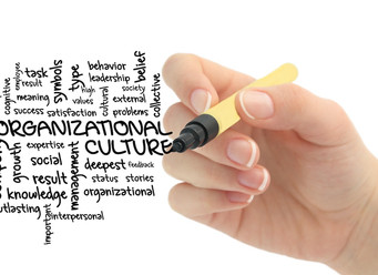 Digitize This!  Making Sense of the Organizational Culture in MFAs in the Digital Age