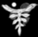 kkv logo.png