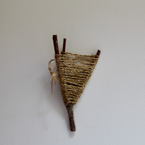 Rosebay Willow Herb on Willow