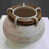 Comp WD Roman Pot IMG 8555.jpg