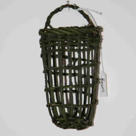 Broom (Plantagenet)