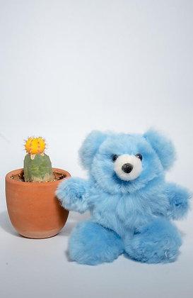 "Benny Bear 6"""