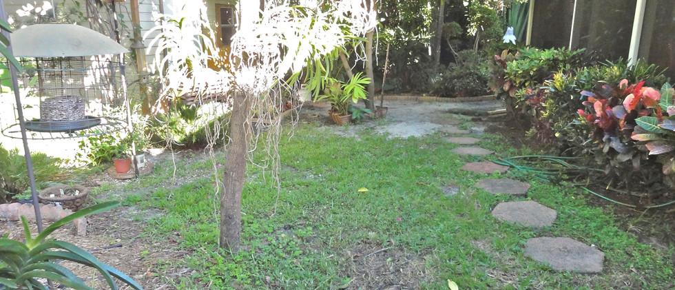 Gray+backyard+BEFORE+(1).jpg