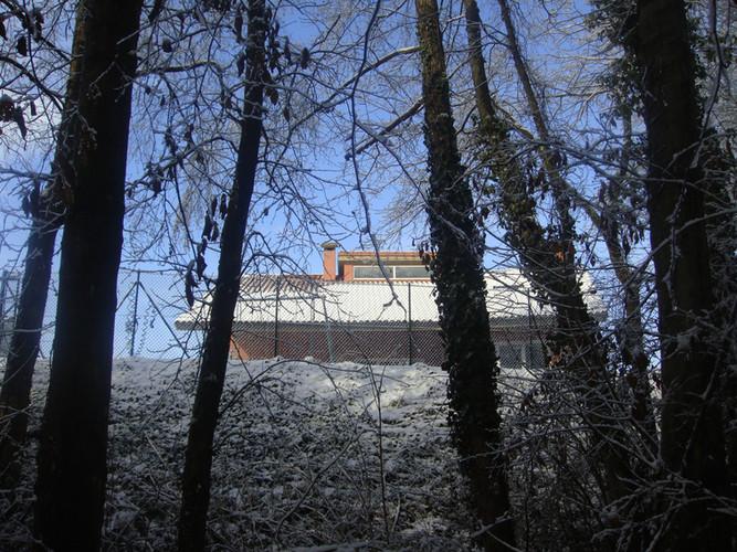 Casa desde el bosque