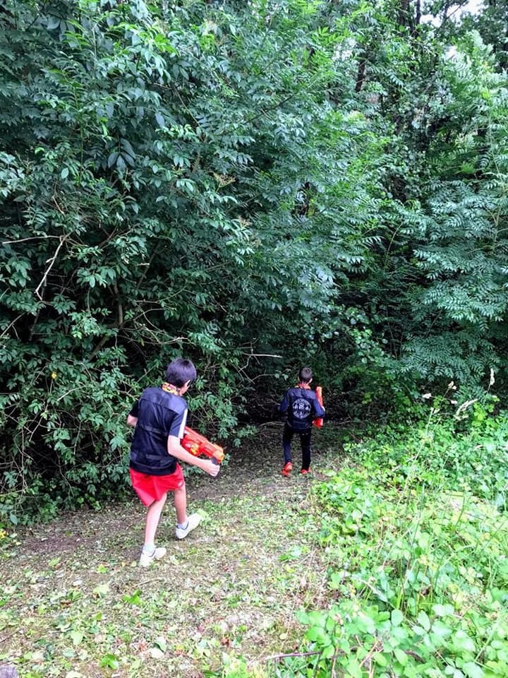 Bosque Albite juego de Nerf