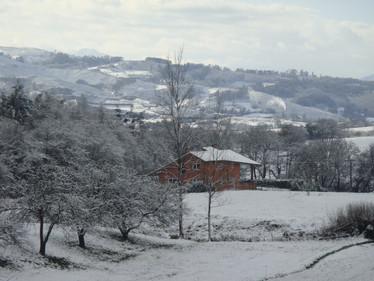 Entorno con nieve