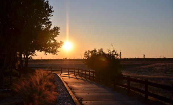 2015-11-19 Duckpoint Trail Walk (23).JPG