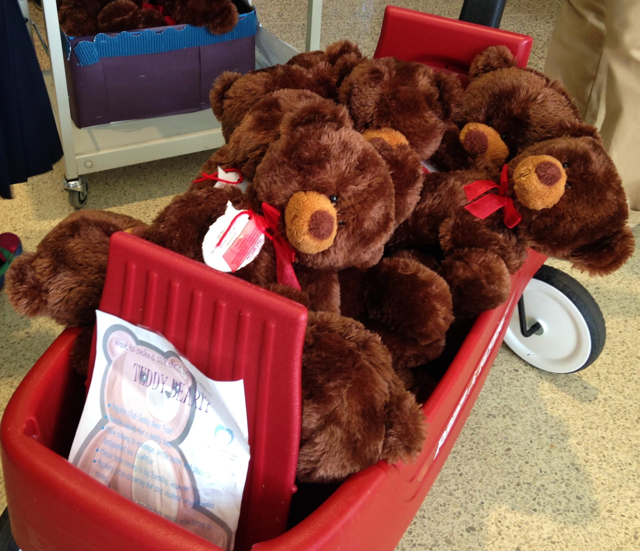 Bears to go