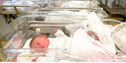 Rosh Hashanah Baby Boom of births!