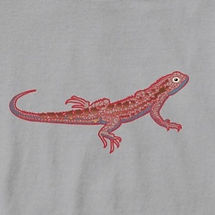 Lizard%20grey_edited.jpg