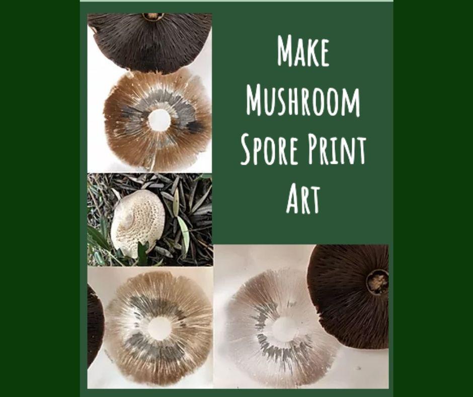 Mushroom Spore Print Art