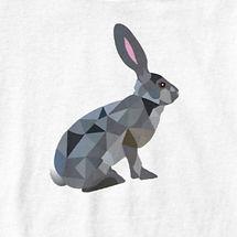 Rabbit%20white_edited.jpg