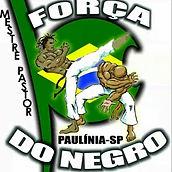 Logo_Força_do_Negro.jpg