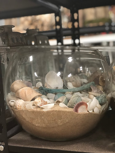 Fish Bowl w/ Sand &  Shells