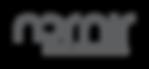 nornir_logo_RTW.png