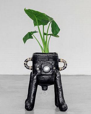 Tessa_Koot_Plantpot_medium_Photography_A