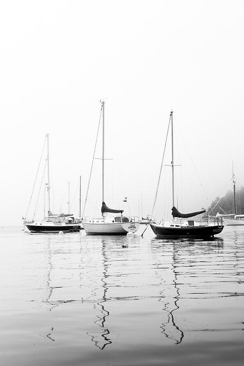 Foggy Threesome