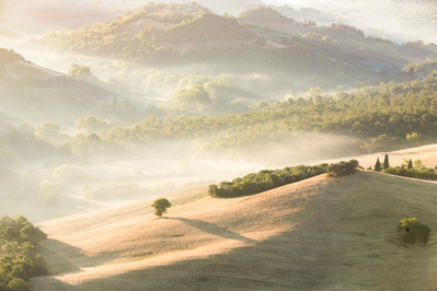 Tuscan Tranquility