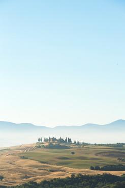 Montalcino Bound