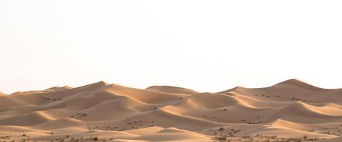 Dune Moguls