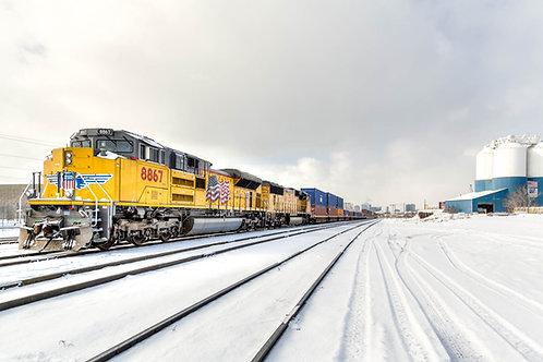 Snowy Tracks  Denver, CO