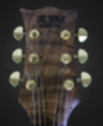RSM custom guitars