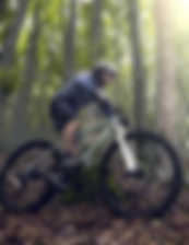 Holiday rentals for mountain bikers