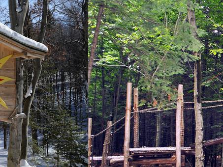 A Treehouse Getaway Can Bring You Joy!