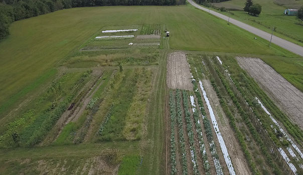 Aerial view of our 1/2 acre