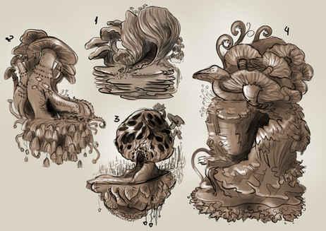Mushrooms Studies