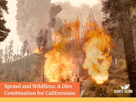 Sprawl and Wildfires: A Dire Combination for Californians