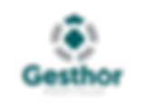 logo_gesthorhospitalar_admin.png